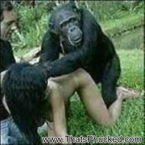 monkey fucking to women